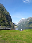 Naeroyfjord Scenic — Stock Photo