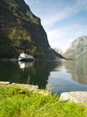 Gudvangen Fjord — Stock Photo