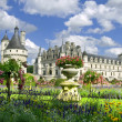 Chenonceaux Castle — Stock Photo #3181340