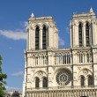 Royalty-Free Stock Photo: Majestic Notre Dame