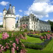 Chenonceaux Castle — Stock Photo