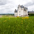 Amboise Castle in Loire Valley — Stock Photo #3182511