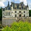 Chenonceaux Castle — Stock Photo #3182611