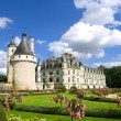 Chenonceaux Castle — Stock Photo #3182689