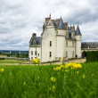 Amboise Castle in Loire Valley — Stock Photo #3182861