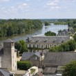 Royalty-Free Stock Photo: Amboise from the Castle
