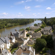 Amboise and Loire — Stock Photo #3182914