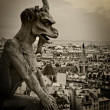 Gargoyle of Notre Dame — Stock Photo #3182933