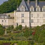 Amboise Castle in Loire Valley — Stock Photo #3182970