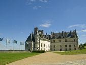 Amboise Castle — Stockfoto