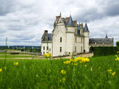 Amboise Castle in Loire Valley — Stock Photo