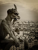 Gargoyle of Notre Dame — Stock Photo