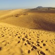 Fuerteventura Dunes - Stock Photo