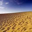 Fuerteventura Dunes — Stock Photo