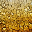 Stockfoto: Dry earth