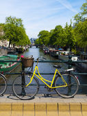 Bicycle in Amsterdam Canal — Stock Photo