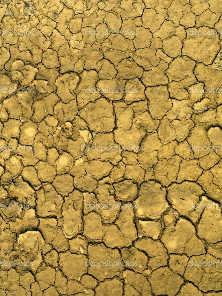 Dry earth background — Stock Photo #3191444