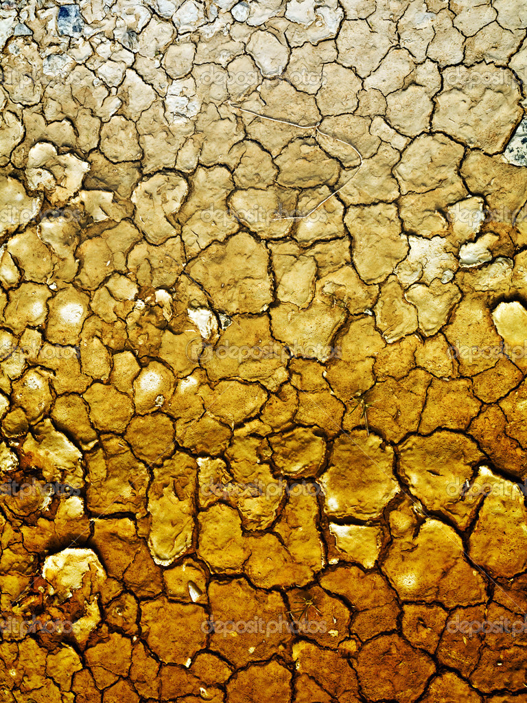 Dry earth background — Stockfoto #3194134