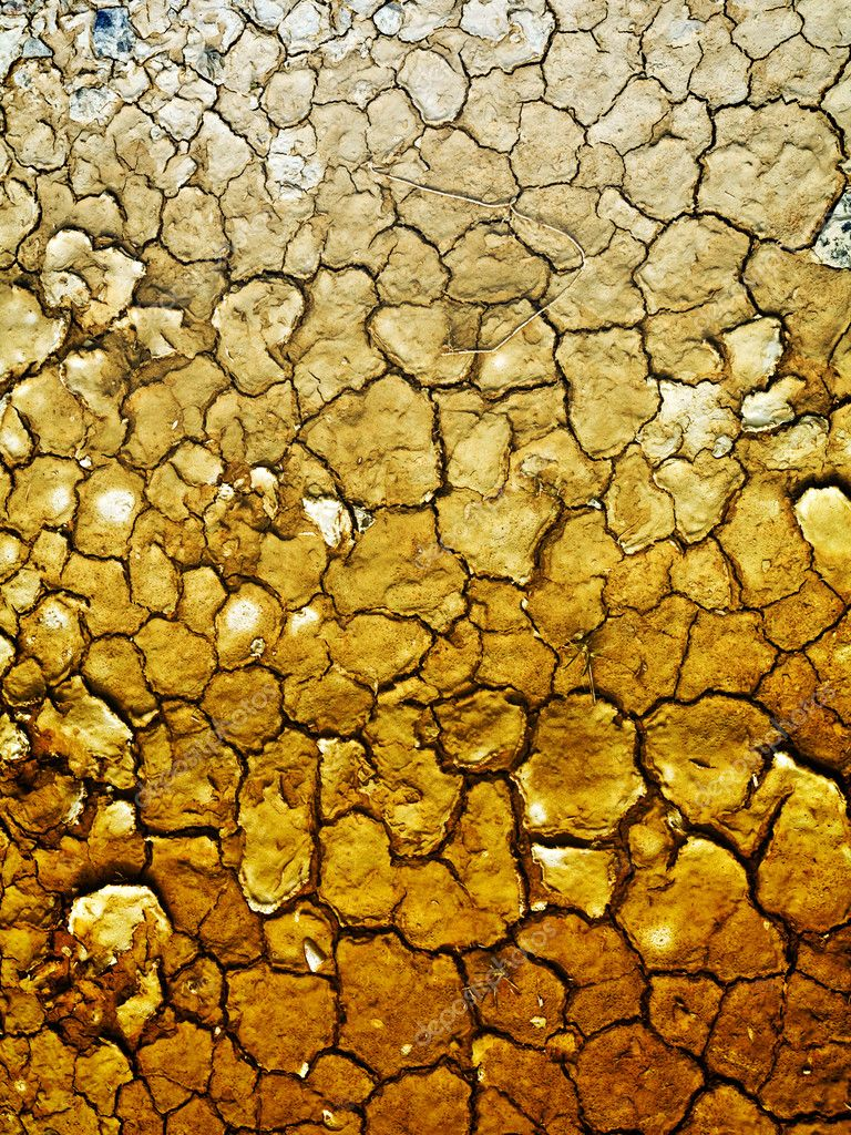 Dry earth background  Foto Stock #3194134