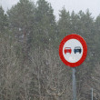 Road sign in a snowing scenary - Stock Photo