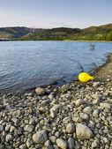 žluté bóje v jezero sant antoni — Stock fotografie