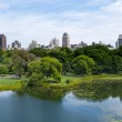 Central Park and Upper East Manhattan — Stock Photo #3849635