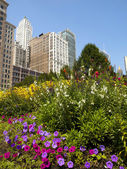 Chicago gökdelenler — Stok fotoğraf