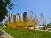 Painted Trees in Butler Field, Chicago — Stock Photo