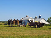 Amish Farmers, Lancaster USA — Stock Photo