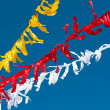 Celebratory colour tapes on a carnival, garlands. — Stock Photo #3860551