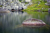 Mountain landscape. Stone on lake of artists. Siberian Natural P — Stock Photo