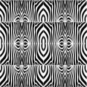 Cebra — Vector de stock