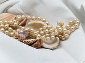 Perle e conchiglie 2 — Foto Stock