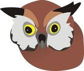 Head of a wild owl — Stock Vector
