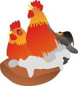 Cockerel and chicken — Stock Vector