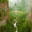 Canyon of Spahats Creek in Wells Gray Provincial Park, Canada - Stock Photo