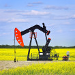 Nodding oil pump in prairies - Stock Photo