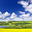 Prairie panorama in Saskatchewan, Canada — Stock Photo