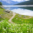 thumbnail of Mountain lake in Jasper National Park, Canada
