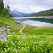 Stock Photo: Mountain lake in Jasper National Park, Canada
