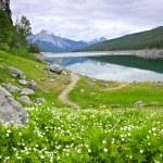 Lago de montaña en el Parque Nacional jasper, Canadá — Foto de Stock