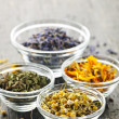 Dried medicinal herbs — Stock Photo