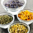 Stock Photo: Dried medicinal herbs