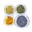 Dried medicinal herbs - Stock Photo