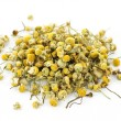 Stock Photo: Medicinal chamomile herbs