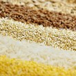 Various grains close up - Stock Photo