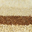 Various grains close up - Foto Stock