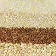 Various grains close up — Foto de Stock