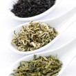 Assortment of dry tea leaves in spoons — Stockfoto