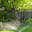 Lawn sprinkler watering grass — 图库照片